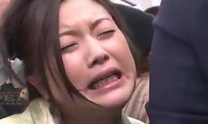 Molester omnibus