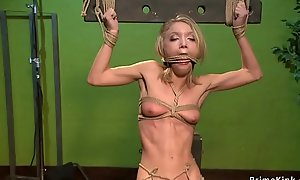 Nourishment blonde is anal toyed in hogtie